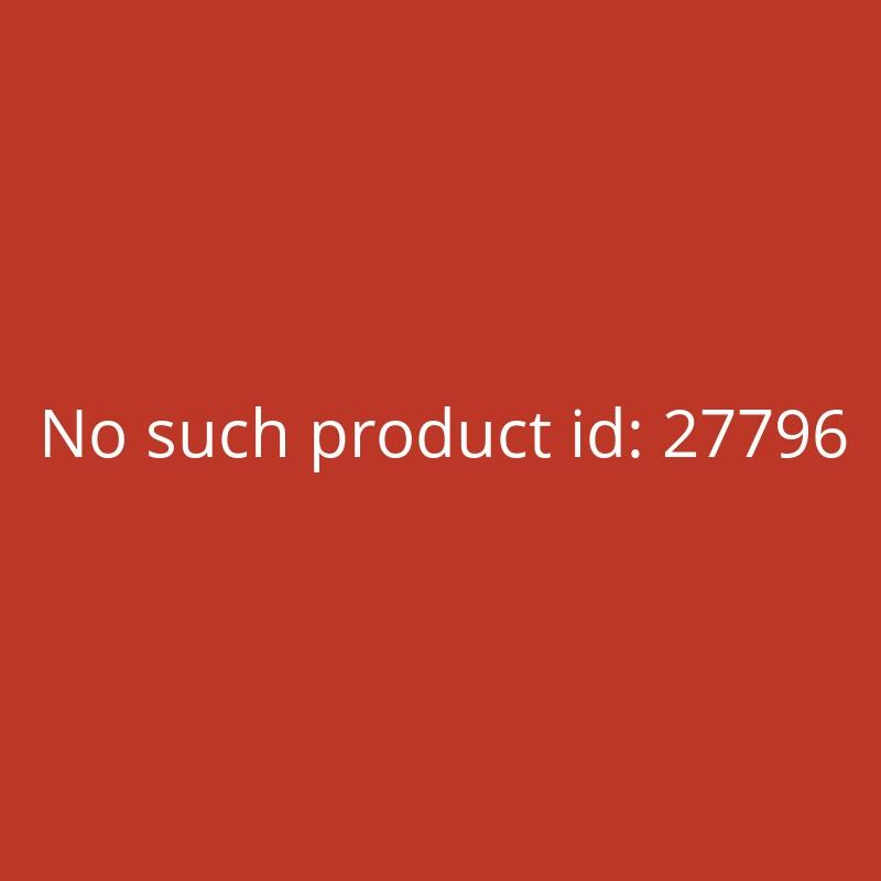 Anbohrschelle 50mm mit Edelstahl Verstärkungsring PE Rohr PVC Rohr